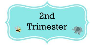 Journal-2nd-Trimester-590x287.jpg